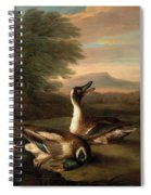 Two Drakes In Landscape Spiral Notebook