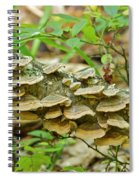 Polypores 9155 Spiral Notebook