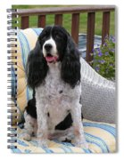 #940 D1034 Farmer Browns Springer Spaniel Spiral Notebook