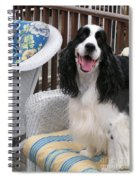 #940 D1036 Farmer Browns Springer Spaniel Happy For You Have A Happy Day Spiral Notebook