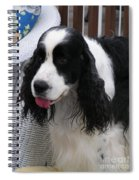 #940 D1039 Farmer Browns Springer Spaniel Fresh Spiral Notebook