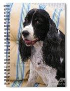 #940 D1043  Farmer Browns Springer Spaniel Smile Hidden Heart Spiral Notebook