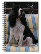 #940 D1045  Farmer Browns Springer Spaniel Spiral Notebook