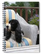 #940 D1052 Farmer Browns Springer Spaniel Spiral Notebook