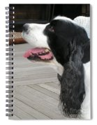 #940 D1060 Farmer Browns Springer Spaniel Spiral Notebook
