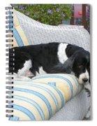 #940 D1061 Farmer Browns Springer Spaniel Spiral Notebook