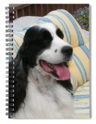 #940 D1066 Farmer Browns Springer Spaniel Happy Spiral Notebook