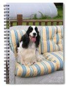 #940 D1079 Farmer Browns Fun In The Sun Spiral Notebook