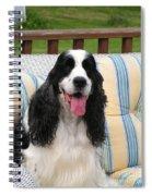 #940 D1088 Farmer Browns Springer Spaniel Spiral Notebook