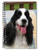 #940 D1089 Farmer Browns Springer Spaniel Spiral Notebook