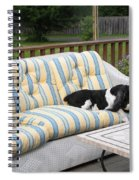 #940 D1094 Farmer Browns Springer Spaniel Together Spiral Notebook