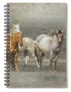 A Band Of Horses Spiral Notebook