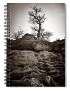 A Barren Perch - Sepia Spiral Notebook