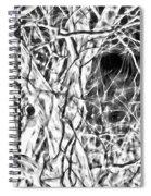 A Bayou Climbing Tree Spiral Notebook