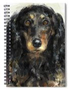 A Beautiful Artistic Painting Of A Dachshund  Spiral Notebook