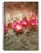 A Beautiful Blur Spiral Notebook