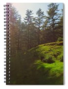 A Beautiful Day In Woods Spiral Notebook