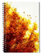 A Beautiful Fall Day Spiral Notebook