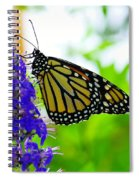 A Beautiful Monarch Spiral Notebook