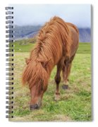 A Beautiful Red Mane On An Icelandic Horse Spiral Notebook