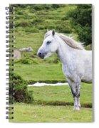 A Beautiful White Dartmoor Pony, Devon, England Spiral Notebook