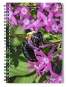 A Bee See Spiral Notebook