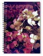 A Bevy Of Hydrangeas  Spiral Notebook
