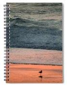 A Bird's Eye View Spiral Notebook