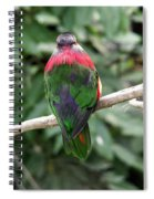 A Bird's Perspective Spiral Notebook