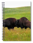 A Bison Brawl Spiral Notebook