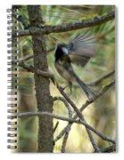 A Black Capped Chickadee Taking Off Spiral Notebook