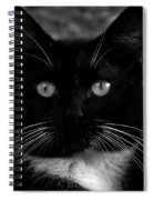A Black Cat's Life -florida Spiral Notebook