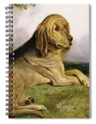 A Bloodhound In A Landscape Spiral Notebook
