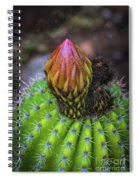 A Blooming Cactus Spiral Notebook