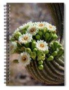 A Bouquet Of Saguaro Blossoms Spiral Notebook