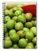 A Bowl Of Black Olives  Spiral Notebook