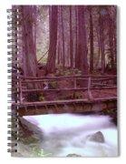 A Bridge To Paradise Spiral Notebook