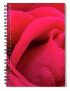 A Bright Pink Rose Close-up Spiral Notebook