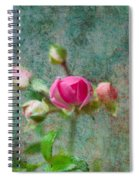 A Bud - A Rose Spiral Notebook