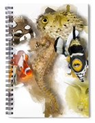 A Bunch Of Colorful Fish No 05 Spiral Notebook