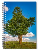 A Canadian Tree Spiral Notebook