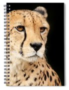 A Cheetah Named Jason Spiral Notebook