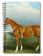 A Chestnut Hunter And A Spaniel By Farm Buildings  Spiral Notebook