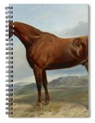 A Chestnut Hunter In A Landscape Spiral Notebook