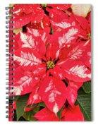 A Christmas Flower Spiral Notebook