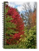 A Collection Of Fall Colours Spiral Notebook