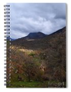 A Colorful Scene Of Burned And Lush Interspersed Foliage In The Southwest Foothills Of The Sierra Ne Spiral Notebook