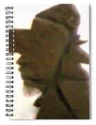 A Cowboy's Shadow In Rock - 2 Spiral Notebook