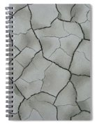 A Cracking Shot Spiral Notebook