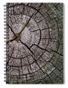 A Cut Above - Patterns Of A Tree Trunk Sliced Across Spiral Notebook
